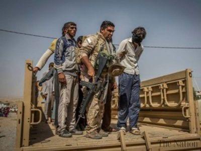 Iraq executes 11 convicted of 'terrorism'
